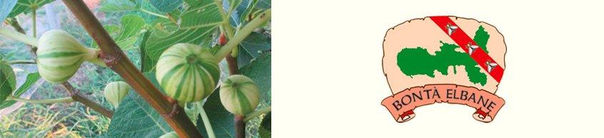 Bontà Elbane E-Shop Online - Vendita online confetture marmellate isola d'Elba