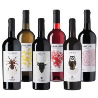 Confezione Degustazione De Quarto - Vini Naturali